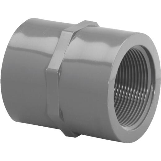 Charlotte Pipe 1-1/2 In. FIP x FIP PVC Coupling
