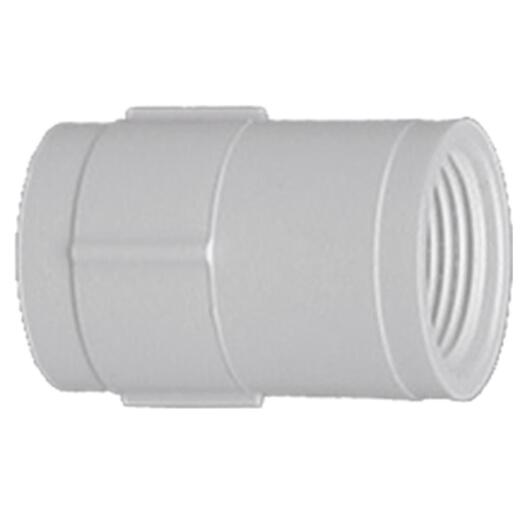 Charlotte Pipe 1/2 In. FIP Sch. 40 Threaded PVC Coupling