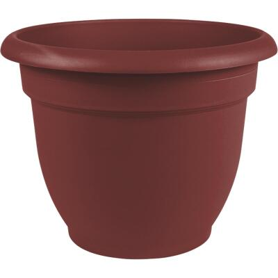Bloem Ariana 12 In. Plastic Self Watering Burnt Red Planter