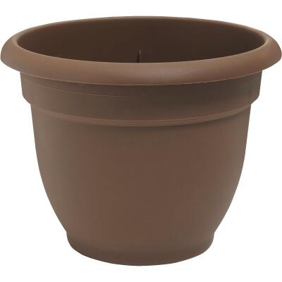 Bloem Ariana 6.5 In. H. x 6 In. Dia. Plastic Self Watering Chocolate Planter
