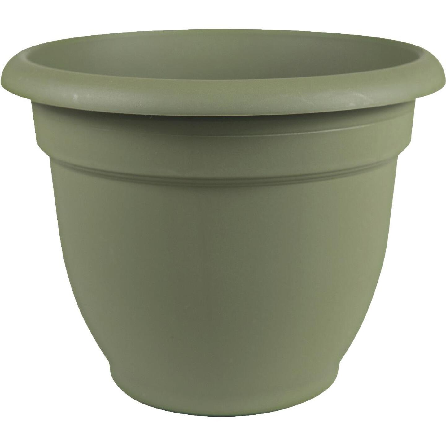 Bloem Ariana 12 In. Plastic Self Watering Thyme Green Planter Image 1