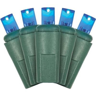 J Hofert Blue 50-Bulb M5 LED Light Set